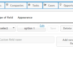 Clevertim CRM Review Custom Fields